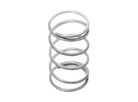 Barton 20x35 mm Stainless Steel Spring